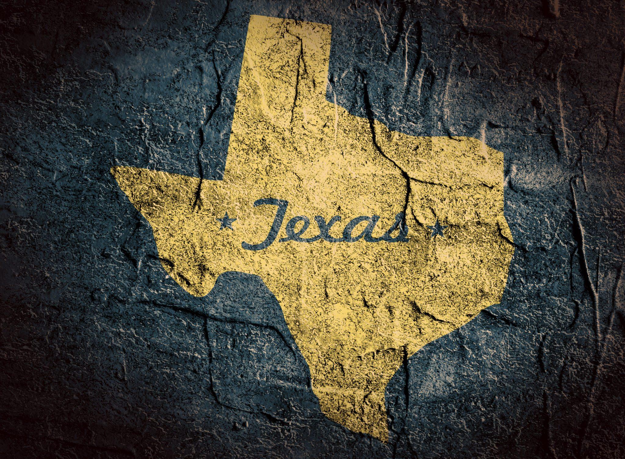 Texas Waterfowl Hunting License